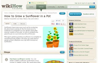 http://www.wikihow.com/Grow-a-Sunflower-in-a-Pot