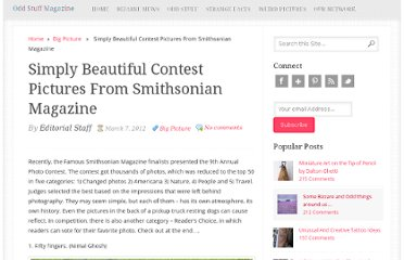 http://oddstuffmagazine.com/simply-beautiful-contest-pictures-from-smithsonian-magazine.html