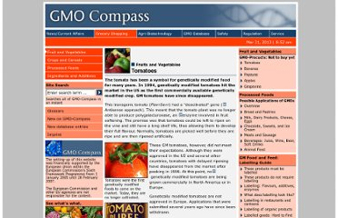 http://www.gmo-compass.org/eng/grocery_shopping/fruit_vegetables/15.genetically_modified_tomatoes.html
