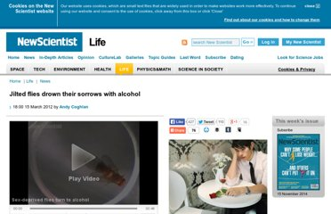 http://www.newscientist.com/article/dn21594-jilted-flies-drown-their-sorrows-with-alcohol.html