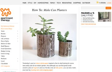 http://www.apartmenttherapy.com/how-to-make-can-planters-75636