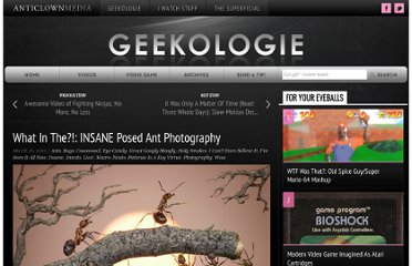 http://www.geekologie.com/2012/03/what-in-the-insane-posed-ant-photography.php