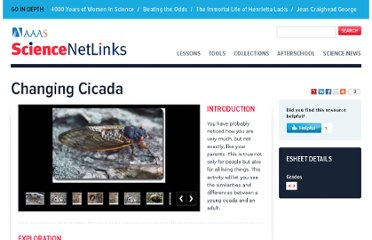 http://sciencenetlinks.com/esheets/changing-cicada/