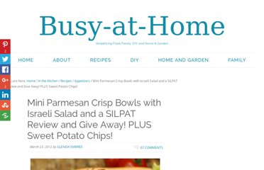 http://busy-at-home.com/blog/parmesan-crisp-bowls-with-israeli-salad-and-a-silpat-review-and-give-away-plus-sweet-potato-chips/