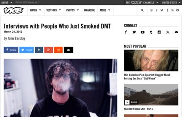 http://www.vice.com/read/interviews-with-people-who-just-smoked-dmt