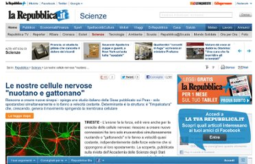 http://www.repubblica.it/scienze/2012/03/26/news/cervello_cellule_motilit_studio_italiano_sissa-32241547/