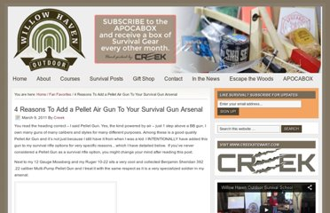 http://willowhavenoutdoor.com/featured-wilderness-survival-blog-entries/4-reasons-to-add-a-pellet-air-gun-to-your-survival-gun-arsenal/