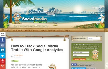 http://www.socialmediaexaminer.com/how-to-track-social-media-traffic-with-google-analytics/