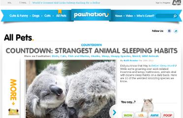 http://www.pawnation.com/2012/03/20/countdown-strangest-animal-sleeping-habits/