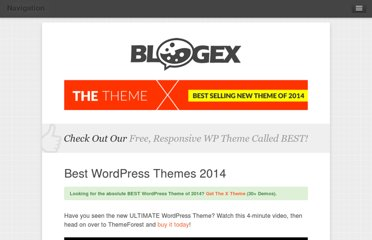 http://bloggingexperiment.com/best-wordpress-themes
