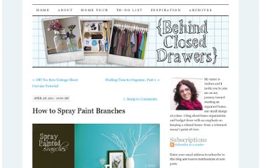 http://behindcloseddrawers.wordpress.com/2011/04/28/how-to-spray-paint-branches/