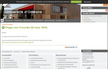 http://www.univ-orleans.fr/sciences/info/index.php?page=master-cci