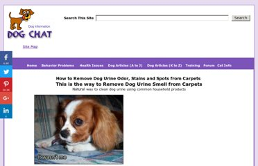 http://www.dogchatforum.com/dog_urine_odor.htm