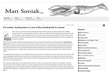 http://mattsoniak.com/2012/04/13/for-snakes-hunting-bats-in-a-cave-is-like-shooting-fish-in-a-barrel/