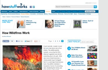 http://science.howstuffworks.com/nature/natural-disasters/wildfire.htm
