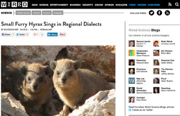 http://www.wired.com/wiredscience/2012/04/hyrax-song-complexity/