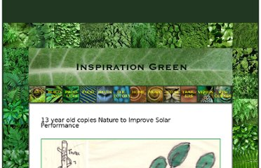 http://inspirationgreen.com/13-year-old-copies-nature-to-improve-solar-performance.html