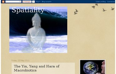 http://emptywave.blogspot.com/2011/05/yin-yang-and-hara-of-macrobiotics.html