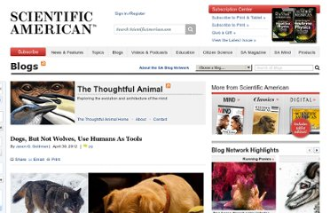 http://blogs.scientificamerican.com/thoughtful-animal/2012/04/30/dogs-but-not-wolves-use-humans-as-tools/