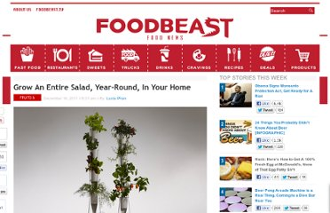 http://foodbeast.com/content/2011/12/16/grow-a-whole-salad-year-round-in-your-home/