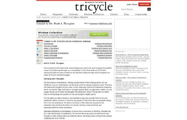 http://www.tricycle.com/special-section/commit-sit-week-4-thoughts