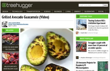 http://www.treehugger.com/easy-vegetarian-recipes/grilled-avocado-guacamole.html