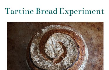 http://tartine-bread.blogspot.com/2011/08/sourdough-starter-demystified.html
