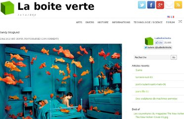 http://www.laboiteverte.fr/sandy-skoglund/