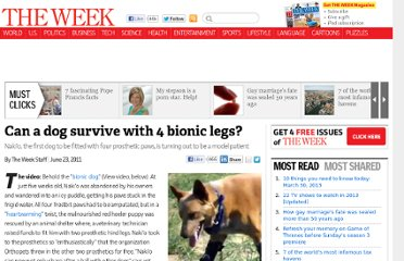 http://theweek.com/article/index/216608/can-a-dog-survive-with-4-bionic-legs