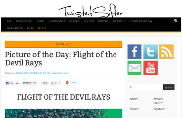 http://twistedsifter.com/2012/05/picture-of-the-day-flight-of-the-devil-rays/