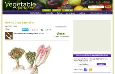 http://www.vegetablegardener.com/item/2426/how-to-grow-radicchio