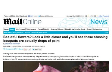 http://www.dailymail.co.uk/news/article-2148837/Artist-Jack-Long-creates-incredible-pictures-flowers-using-drops-paint.html