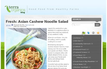 http://blog.terra-organics.com/2012/05/fresh-asian-cashew-noodle-salad/