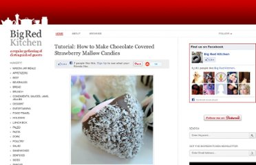 http://www.bigredkitchen.com/2010/03/tutorial-how-to-make-chocolate-covered-strawberry-mallow-candies/