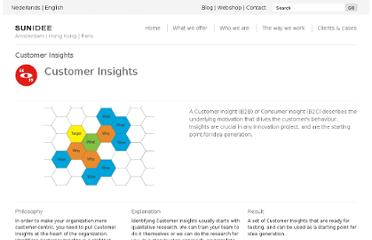 http://sunidee.com/how-we-work/customer-insights.html