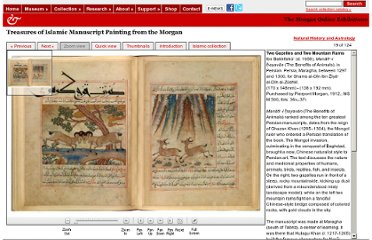 http://www.themorgan.org/collections/works/islamic/manuscript.asp?page=19