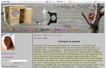 http://briecollages.canalblog.com/archives/2009/03/26/13126996.html