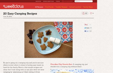 http://weelicious.com/2012/06/18/20-easy-camping-recipes/