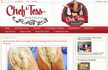 http://cheftessbakeresse.blogspot.com/2012/06/how-to-never-buy-yeast-again.html