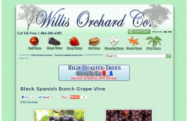 http://www.willisorchards.com/product/Black+Spanish+Bunch+Grape+Vine