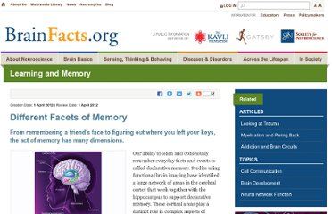 http://www.brainfacts.org/sensing-thinking-behaving/learning-and-memory/articles/2012/different-facets-of-memory/
