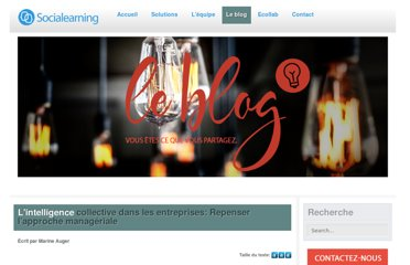 http://www.socialearning.fr/nos-actualites/191-intelligence-collective-repenser-lapproche-manageriale