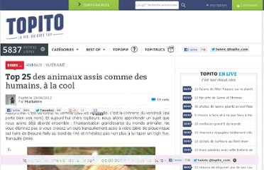 http://www.topito.com/top-animaux-assis-humains