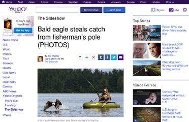 http://news.yahoo.com/blogs/sideshow/bald-eagle-steals-catch-fisherman-pole-photos-203014992.html