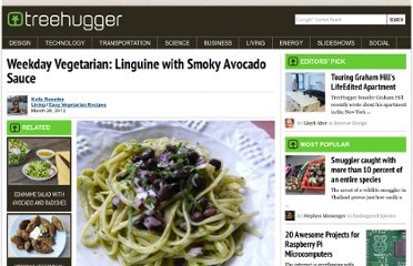 http://www.treehugger.com/easy-vegetarian-recipes/weekday-vegetarian-linguine-smoky-avocado-sauce.html