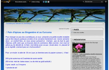 http://embrunsetparfumsdusudsauvage.over-blog.com/article-pain-d-epices-au-gingembre-et-au-curcuma-80518134.html