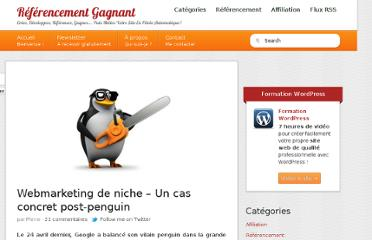 http://www.referencement-gagnant.com/webmarketing-de-niche-un-cas-concret-post-penguin/