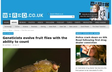 http://www.wired.co.uk/news/archive/2012-07/11/fruit-flies-can-count