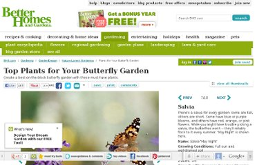 http://www.bhg.com/gardening/design/nature-lovers/butterfly-garden-plants/#page=7