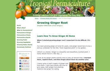 http://www.tropicalpermaculture.com/growing-ginger.html